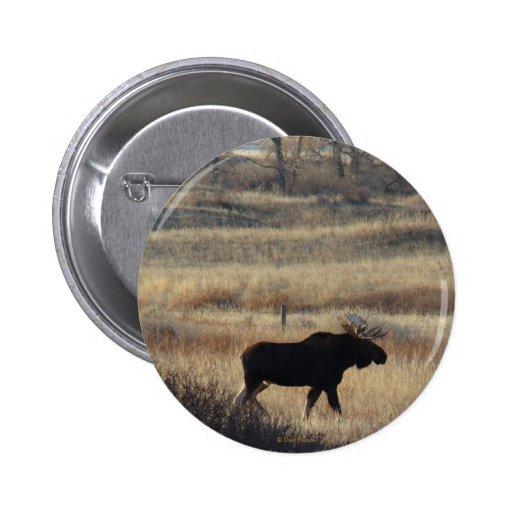 Botón de los alces de M0005 Bull Pin Redondo De 2 Pulgadas