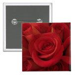 Botón de los rosas rojos pin