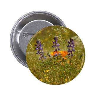 Botón de los Wildflowers del altramuz Pins