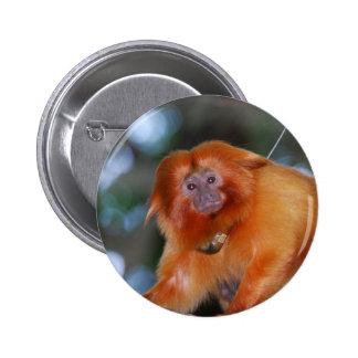 Botón de oro del Tamarin del león Pins