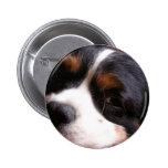 Botón de rey Charles Cavalier Spaniel Round Pins