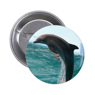 Botón de salto del delfín