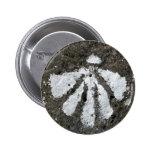 Botón de Shell de concha de peregrino Pin Redondo De 2 Pulgadas