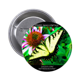 Botón de Swallowtail del tigre (blanco transparent Pins
