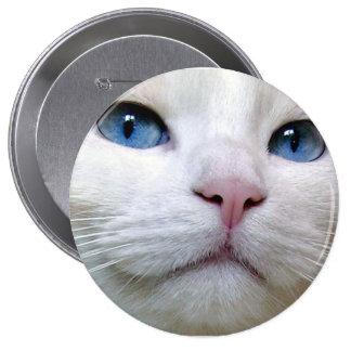 Botón de Tom Pin