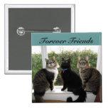 Botón de tres amigos del gato pins