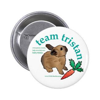 Botón de Tristan del equipo Pin