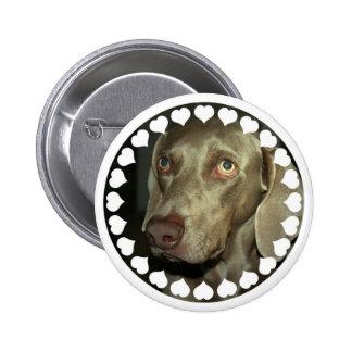Botón de Weimeraner del amor Pin