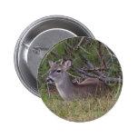 Botón de Young Buck Pin