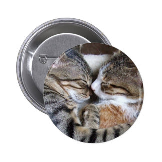 Botón del amor del gato pin redondo de 2 pulgadas