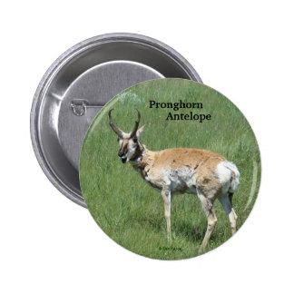 Botón del antílope de A0003 Pronghorn Pin Redondo De 2 Pulgadas