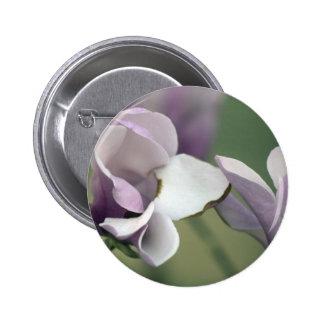 Botón del árbol de la magnolia