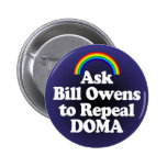 Botón del arco iris de DOMA para el representante. Pin