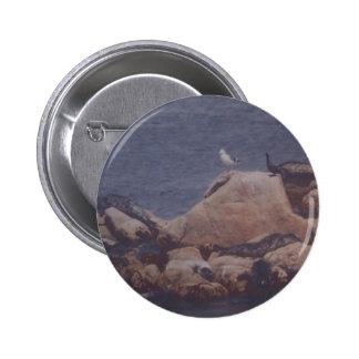 Botón del baño de Monterey Sun Pins