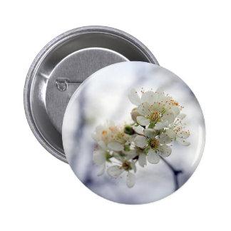 Botón del blanco de la primavera pins