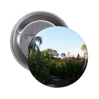 Botón del bosque de la planta pin