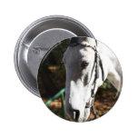 Botón del caballo blanco pins