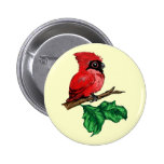 Botón del cardenal del bebé pin