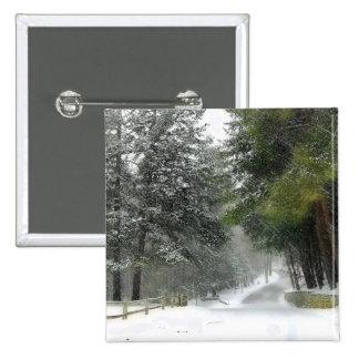 Botón del carril Nevado Pins