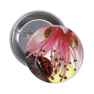 Botón del Carwash de la mariquita Pin