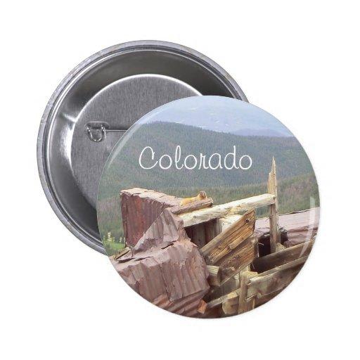 Botón del castor de Colorado Pins