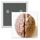 botón del cerebro pin cuadrado