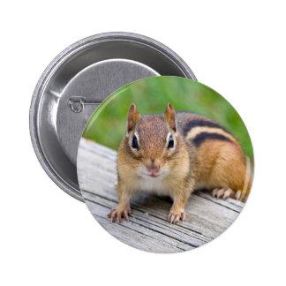 Botón del Chipmunk