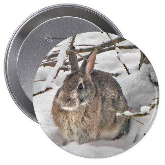 Botón del conejito pin redondo de 4 pulgadas