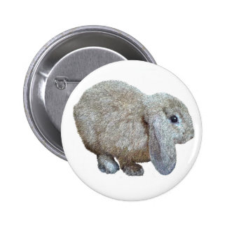 Botón del conejo del oído de Holanda Lop