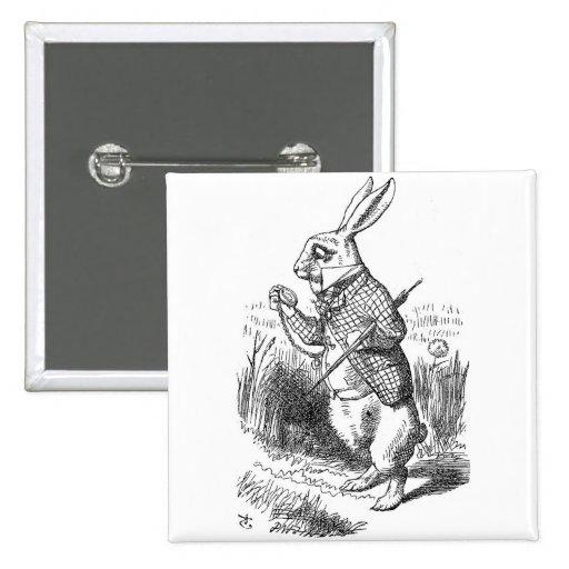 Botón del conejo pin