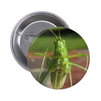 Botón del ~ de Katydid Pin Redondo De 2 Pulgadas