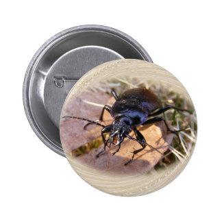 Botón del ~ del escarabajo de tierra pin redondo de 2 pulgadas