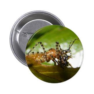 Botón del ~ del insecto de asesino pin redondo de 2 pulgadas