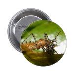 Botón del ~ del insecto de asesino pins