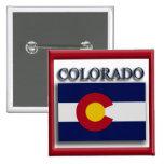 Botón del diseño de la bandera del estado de Color Pins