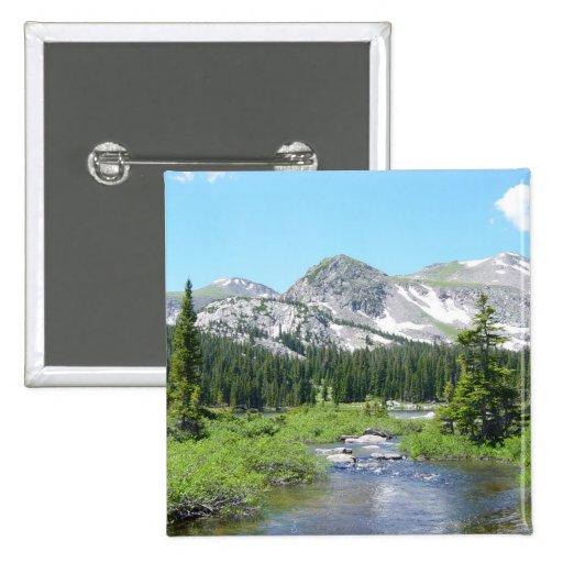 Botón del esplendor de Colorado Pin