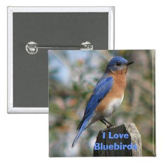 Botón del este del varón del Bluebird Pin Cuadrado
