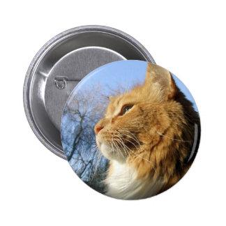 Botón del gato de los cielos azules pin redondo de 2 pulgadas