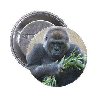 Botón del gorila del Silverback Pin Redondo De 2 Pulgadas