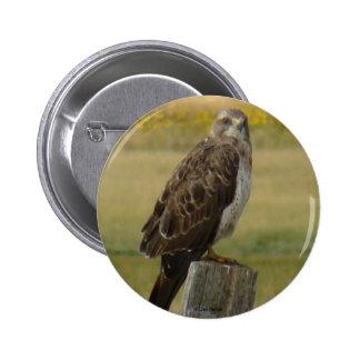 Botón del halcón de B0033 Swainsons Pin Redondo De 2 Pulgadas