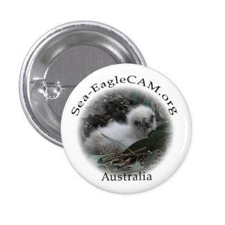 Botón del Hatchling de Mar-Eagle Pins