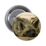 Botón del Hyena el dormir Pins