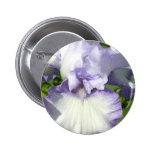 Botón del iris barbudo pin