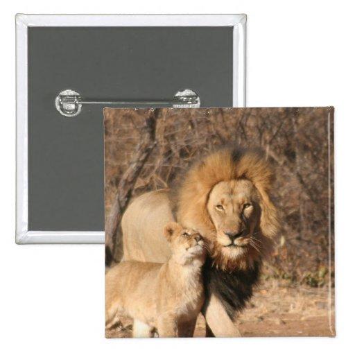 Botón del león y de Cub de león Pins