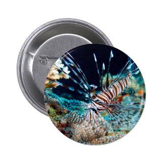 botón del lionfish pin redondo de 2 pulgadas