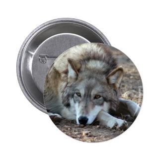 Botón del lobo de los lobos pin
