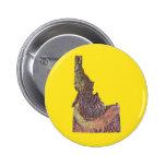 Botón del mapa de Idaho Pins