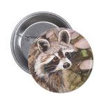 Botón del mapache pins
