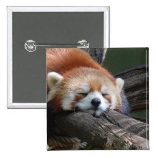 Botón del oso de panda el dormir pin cuadrado