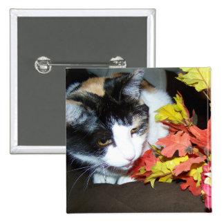 Botón del otoño del gato de calicó pins